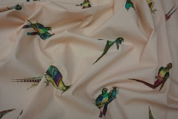 Lady McElroy Parakeets Faulty Remnant 2.2M